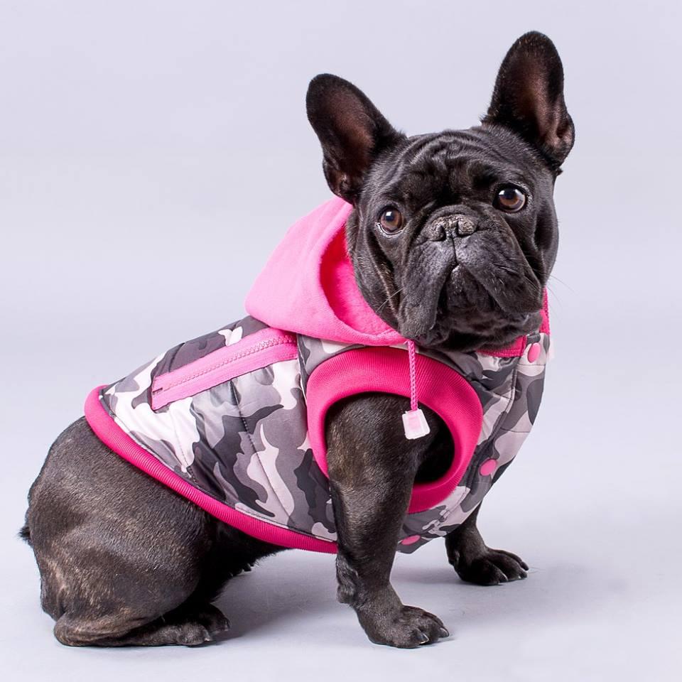 ropa para perros argentina
