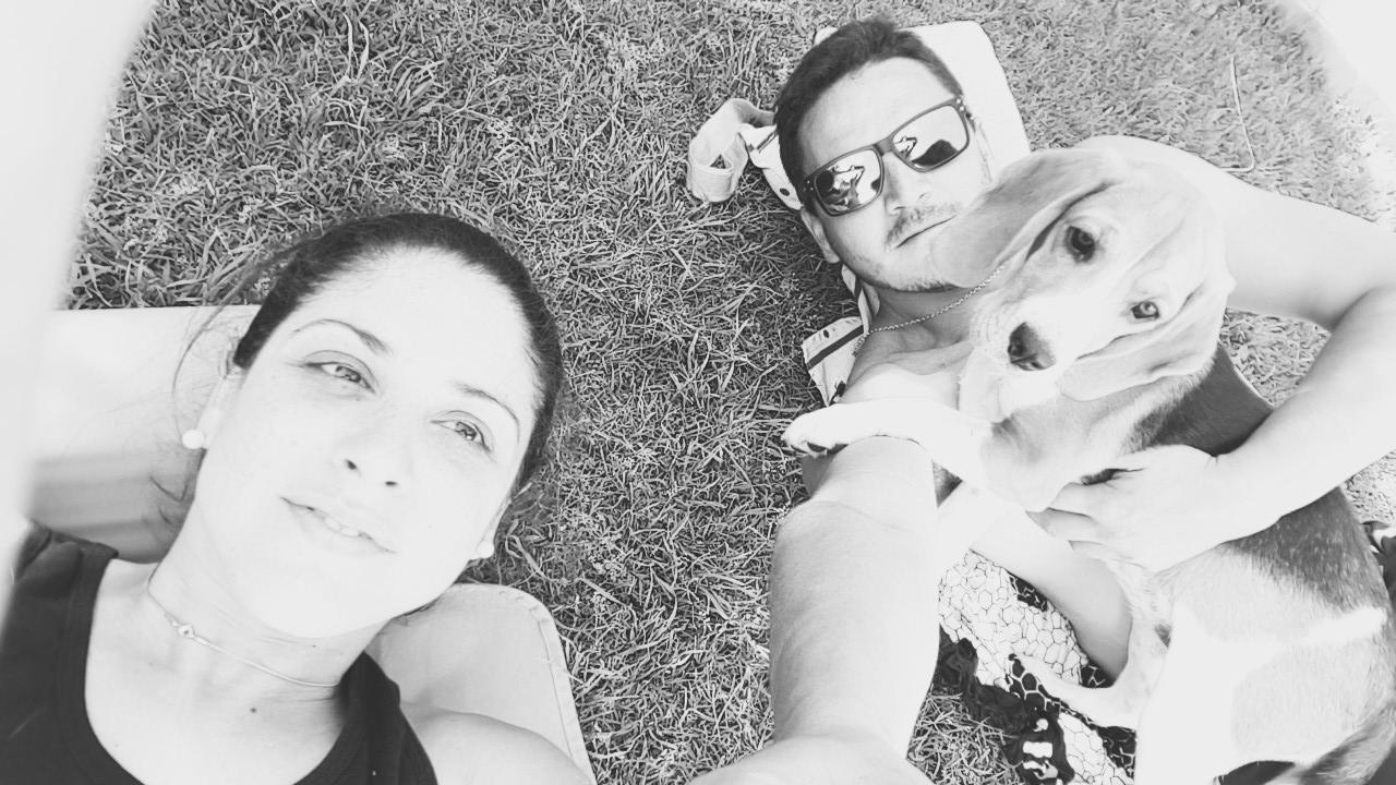 Guia Mi Perro y Yo Perros Beagle
