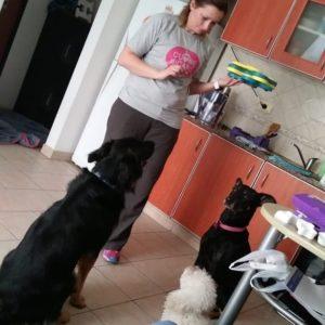 Mara Ritrovati Adiestrador canino
