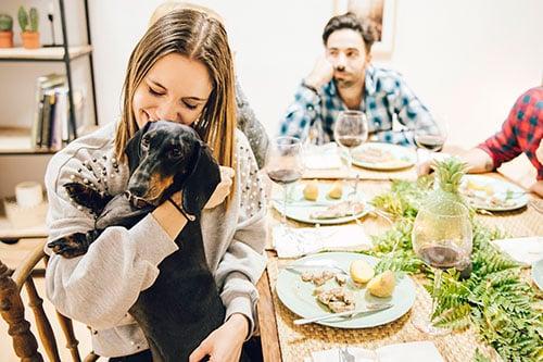comida natural para perros