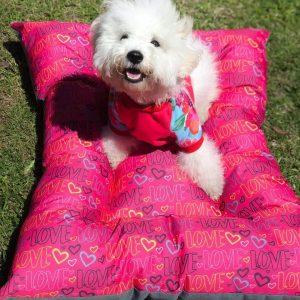 colchonetas antidesgarro para perros pequeños argentina
