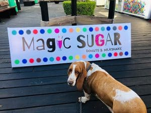 Magic Sugar Pinamar