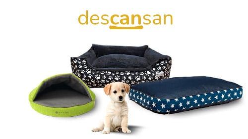 camas para perros en argentina